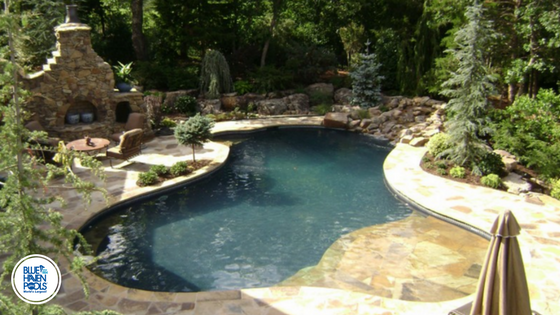 Gunite Pool With Landscaping And Stone Details