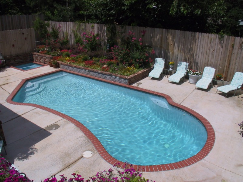 Free Form Pool Designs Blue Haven Pools